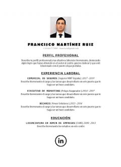 categoria-nueva-plantilla-curriculum-vitae-centrado