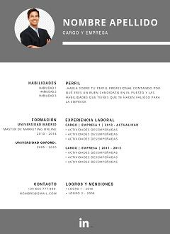 categoria-nueva-plantilla-curriculum-vitae-gris-arriba