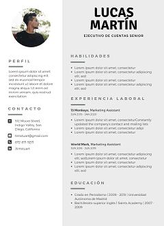 categoria-nueva-plantilla-curriculum-vitae-gris-foto-lado