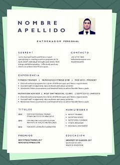 categoria-nueva-plantilla-curriculum-vitae-original-enmarcada