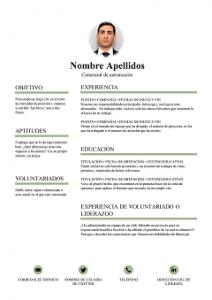 Currículum Vitae Básicos Para Descargar Gratis 2019