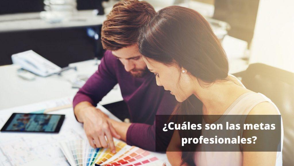 ¿Cuáles son las metas profesionales?