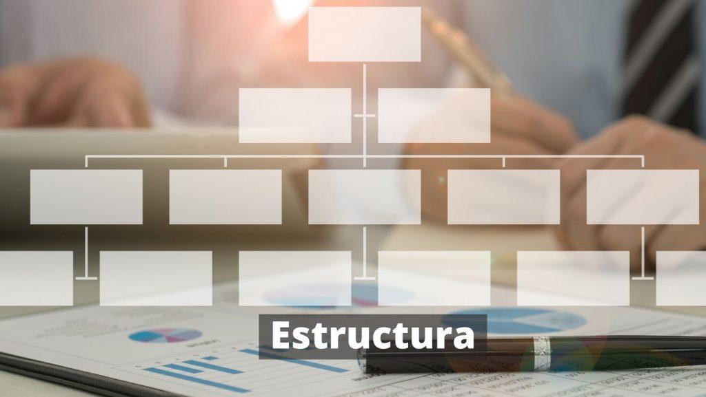 Estructura del resumen profesional