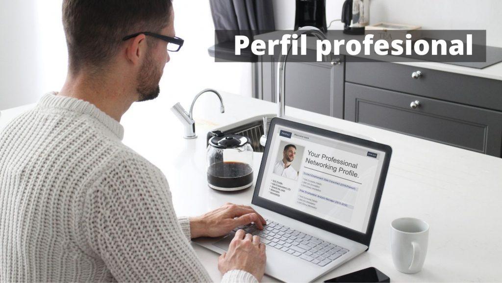 perfil profesional en el curriculum