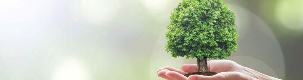 trabajos mejor pagados en el futuro relacionados a la sustentabilidad